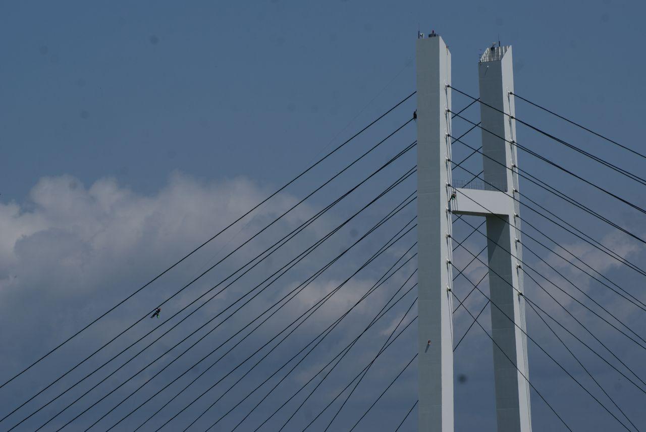 斜張橋点検