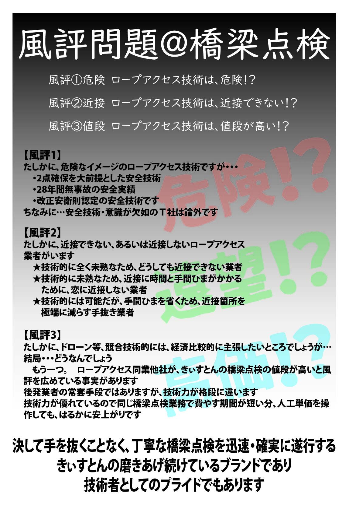 岩壁・法面調査に【PRO革命】